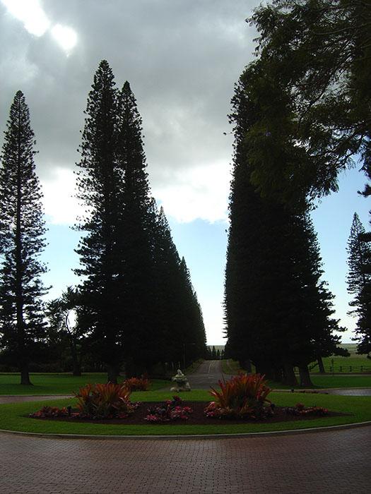 Four Seasons Lodge at Koele Lanai