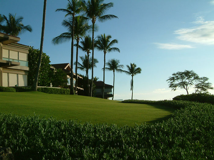 Destination Wailea