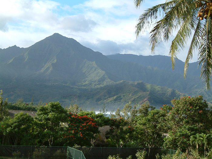 View Of Hanalei Bay & Mountains