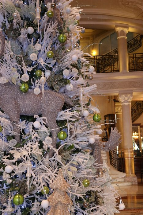 Christmas Trees In Monte Carlo