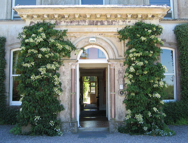 Ballyvolane House Review