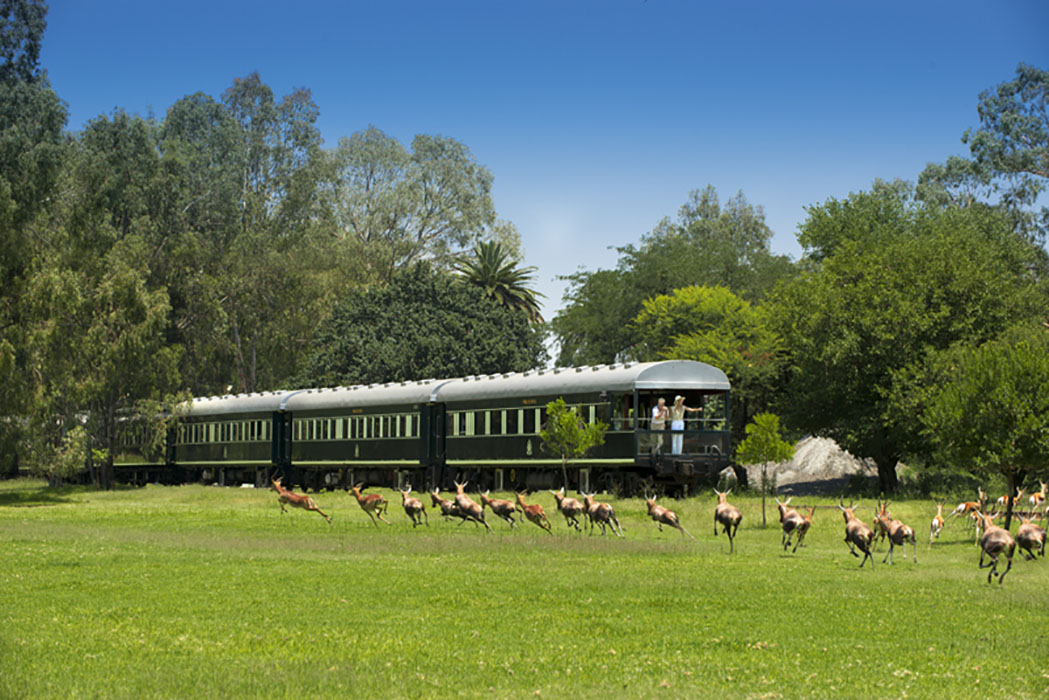 Rovos Rail Luxurious Train Review