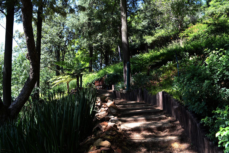 Four Seasons The Westcliff, Johannesburg Review