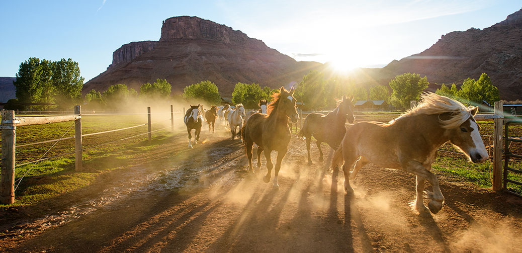 Sorrel River Ranch Review