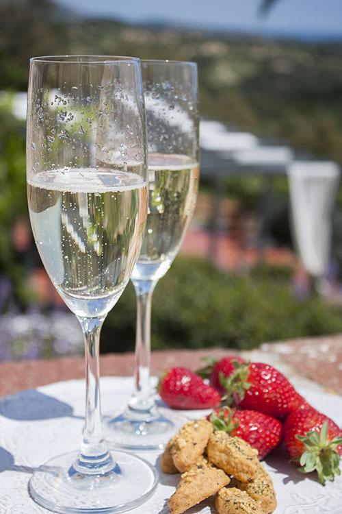 Sant Pere Del Bosc Hotel Review, Costa Brava