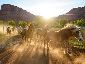 2 nights at Sorrel River Ranch Resort, Utah