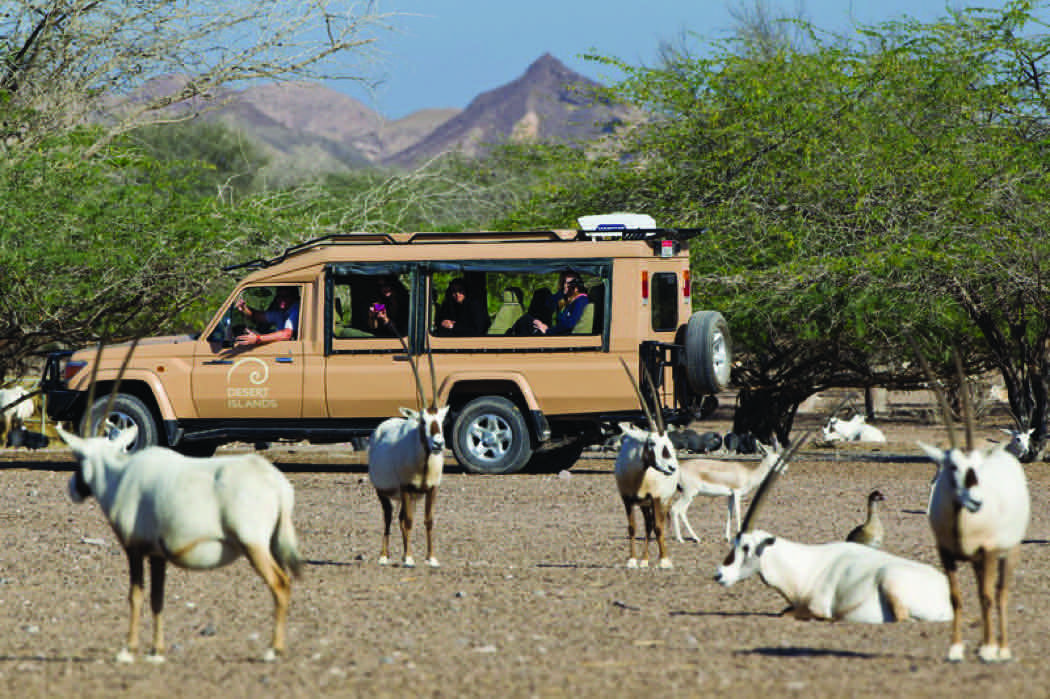 Desert Island Near Abu Dhabi – Review Of Anantara Sir Bani Yas