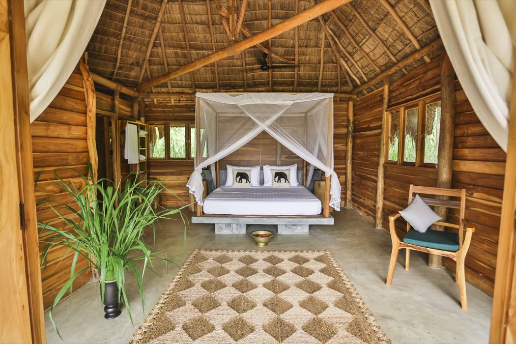Gal Oya Lodge Review, Sri Lanka