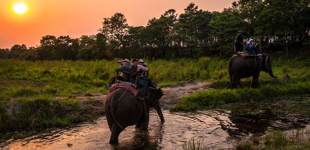Tigerland Safari Resort Review, Nepal