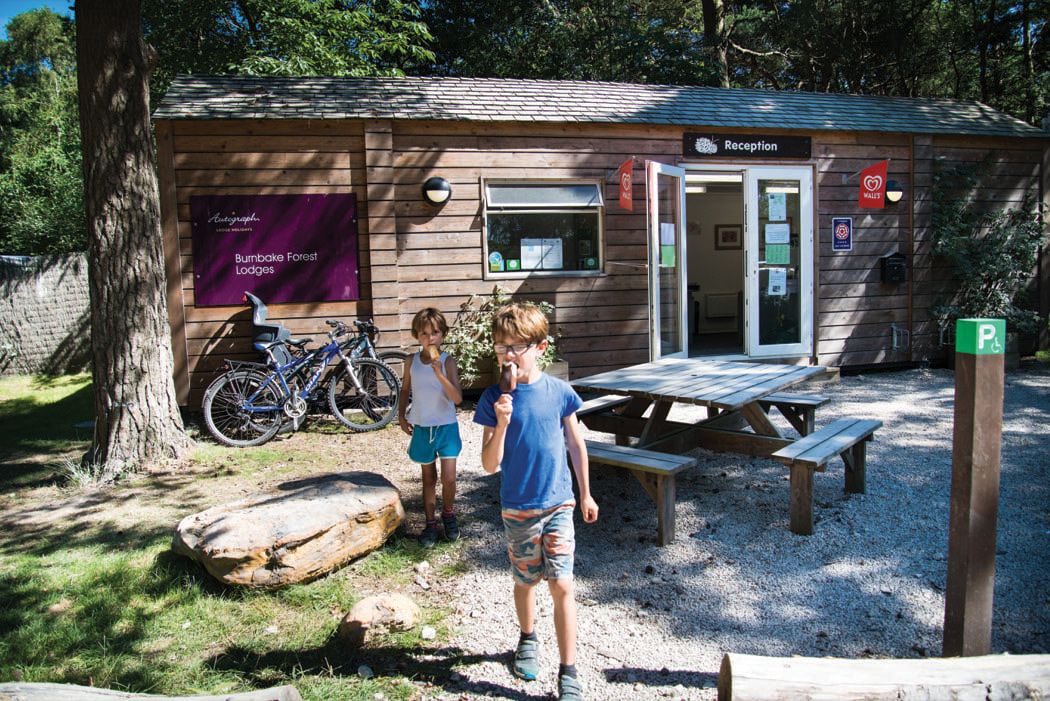 Review: Burnbake Lodges, Dorset