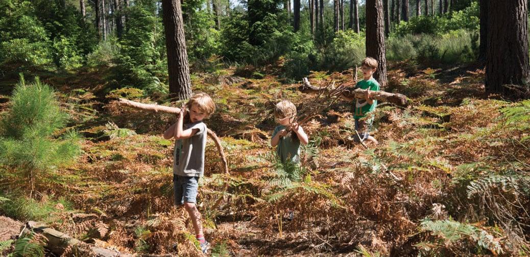 Review: Burnbake Lodges, Dorset