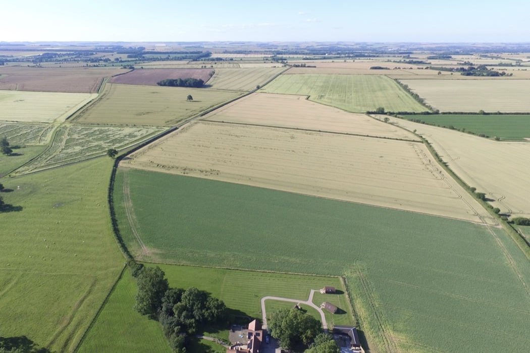 Review: Bracken Burrows in Yorkshire