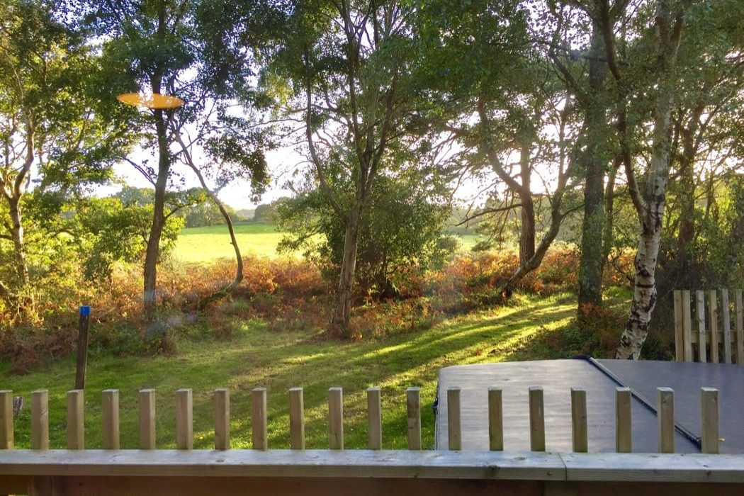 Luxury Self-Catering Escapes Amidst Nature In Dorset
