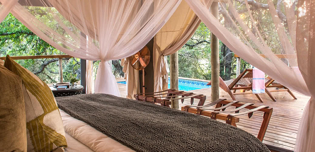Safaris To Die For: Escape To The Wilderness In Complete Luxury