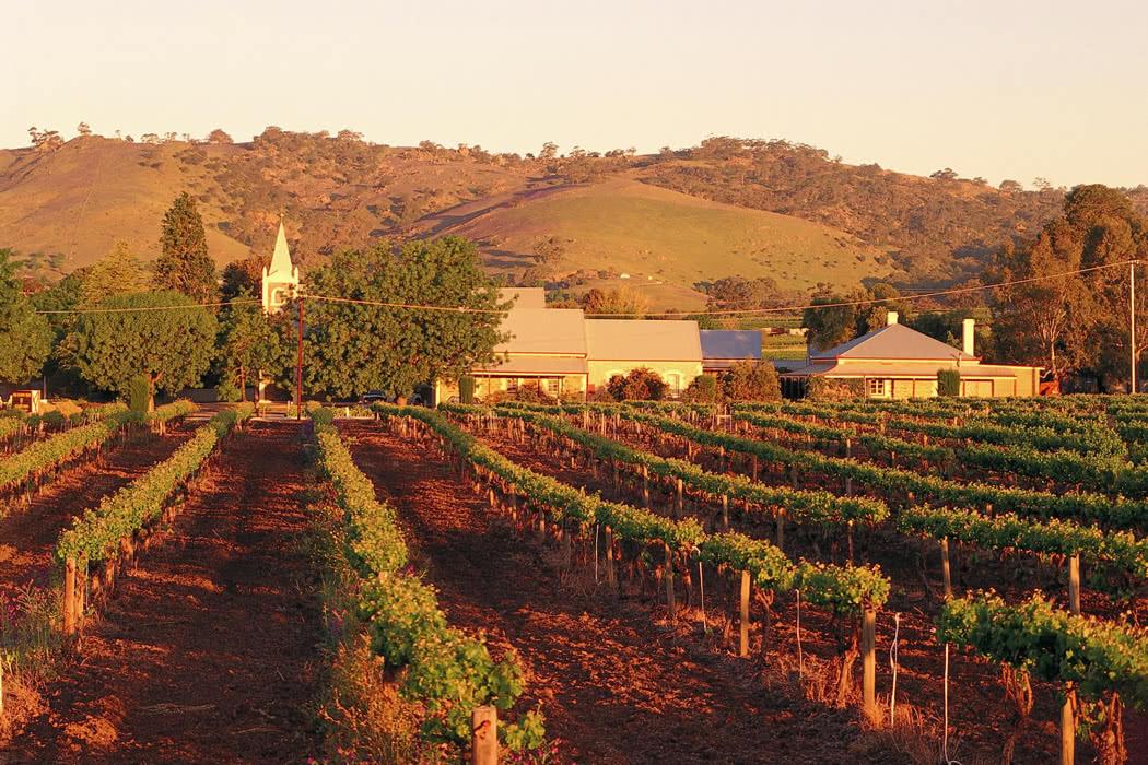Top 5 Luxury Experiences In South Australia