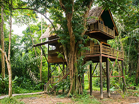 4 Nights For 6 People In A Jungle Camp Eco Resort In Thailand