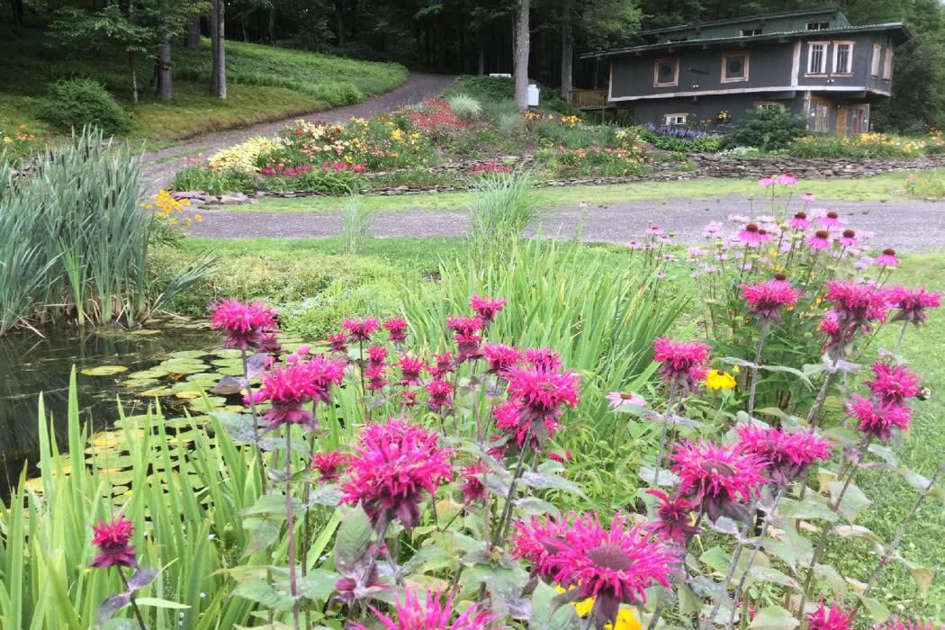 Review: Natural Gardens, Western Catskills, Upstate New York