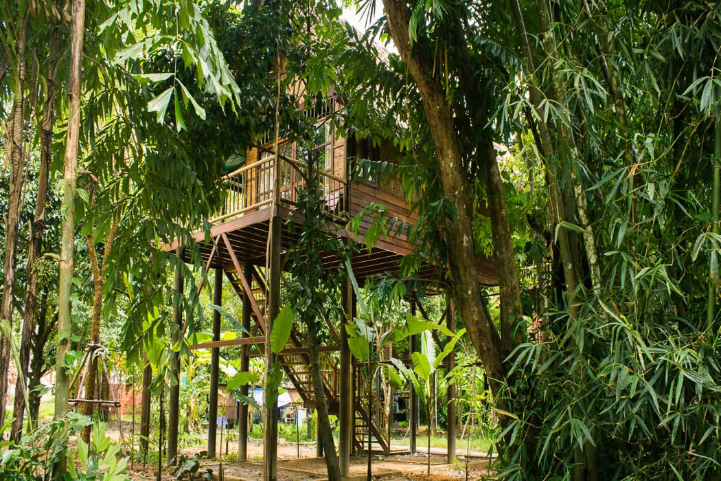 Review: Our Jungle Camp, Khao Sok Eco Resort