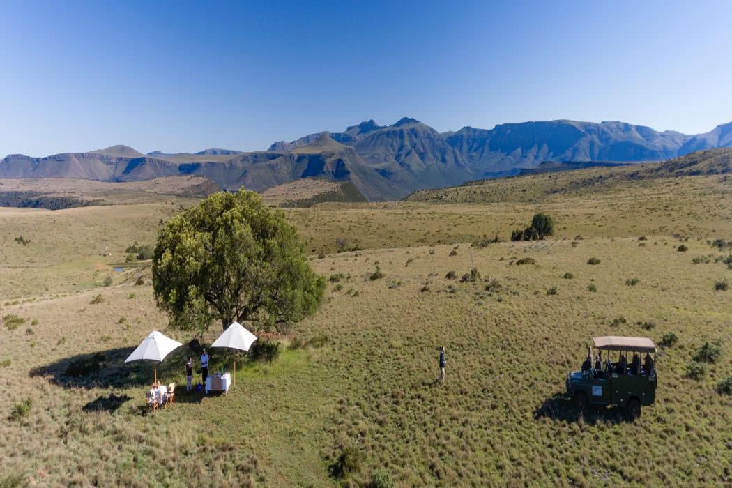 Safari Review: Mount Camdeboo Private Game Reserve