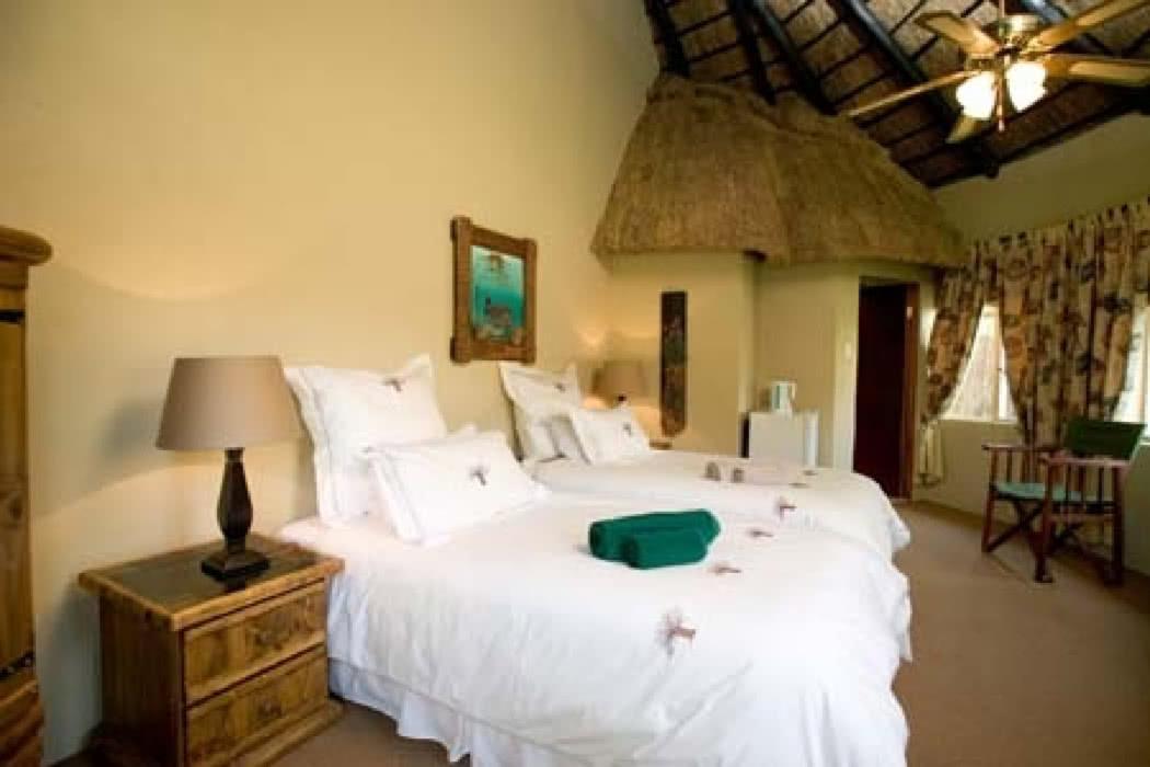 Review: Ditholo Game Lodge, Limpopo, Bela Bela