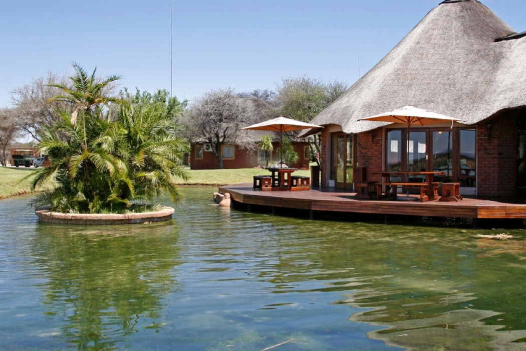 Review: Ditholo Game Lodge, Limpopo, Bela Bela