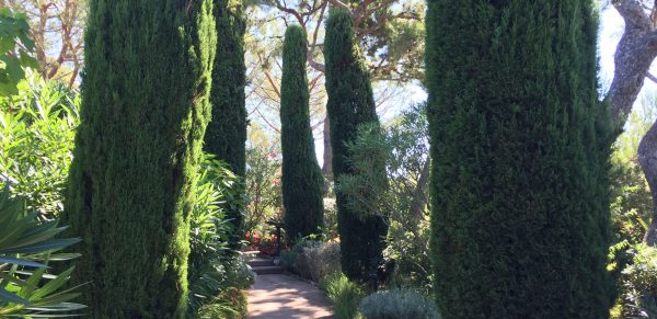 Four Seasons Resort Napa Valley: Special Offers & Deals