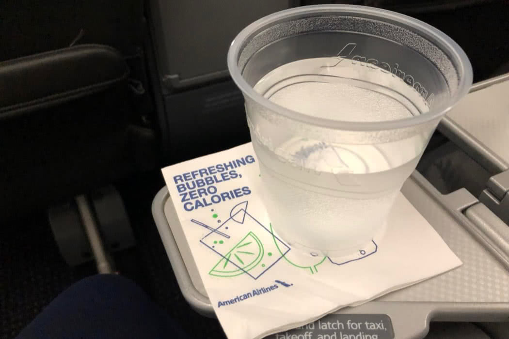 Flight Review: American Airlines A321 Domestic First Class, MCO to DCA