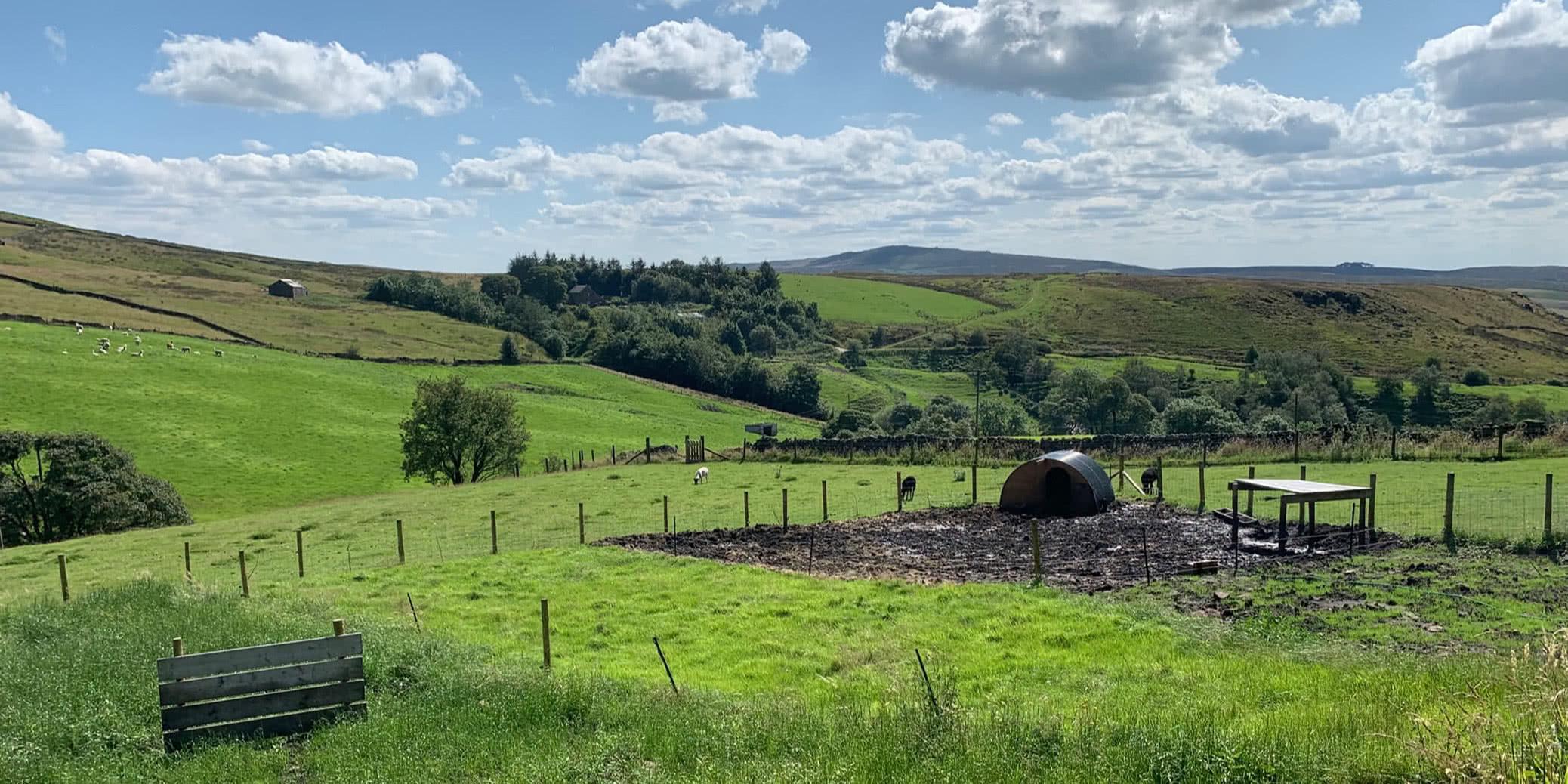 Review: Axe Edge Green Farm