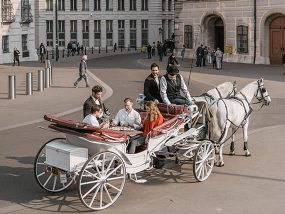 Wine & Sightseeing Carriage Ride in Vienna, Austria For 4Ppl